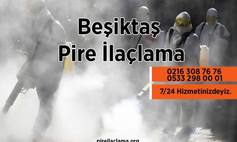 Beşiktaş Pire İlaçlama Firması