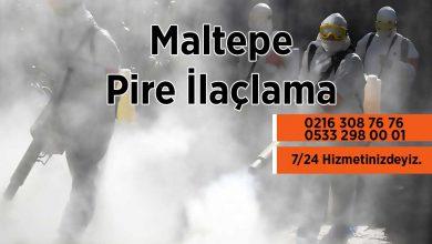 Maltepe Pire İlaçlama Şirketi