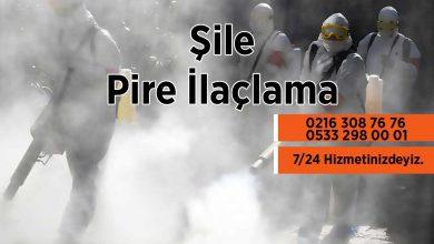 Şile Pire İlaçlama Firması
