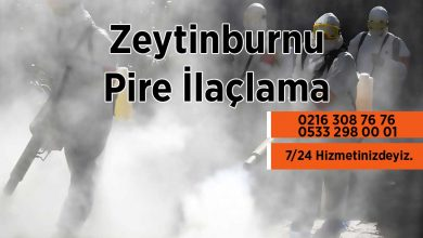 Zeytinburnu Pire İlaçlama Firması